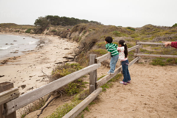 Two children overlooking seals lying on the beach at Ano Nuevo State Reserve