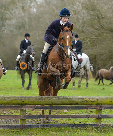 Willa Newton jumping a fence by Orton Park - The Cottesmore Hunt at Manor Farm