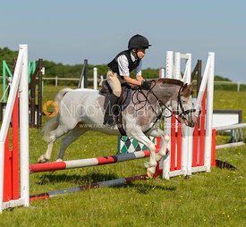 Class 2 50cm - Cottesmore Hunt Pony Club Showjumping -  17 June 2017