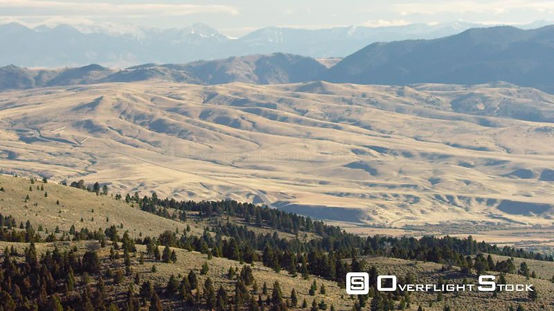 Wide open sagebrush covered meadows and dense forests cover the foothills of the Gravelly mountain range in southwestern Montana, with the golden Madison Valley and Madison mountain range in the distance