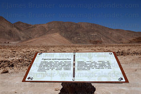 Information board describing geoglyphs at Cerro Pintados , Region I , Chile