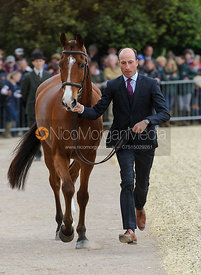 Tim Price and RINGWOOD SKY BOY - First Horse Inspection, Mitsubishi Motors Badminton Horse Trials 2014
