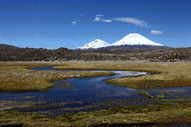 River Lauca and Payachatas volcanoes , Lauca National Park , Region XV , Chile