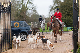 Huntsman and hounds arrive at the meet