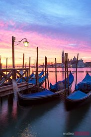 Gondolas moored at sunrise, Venice, Italy