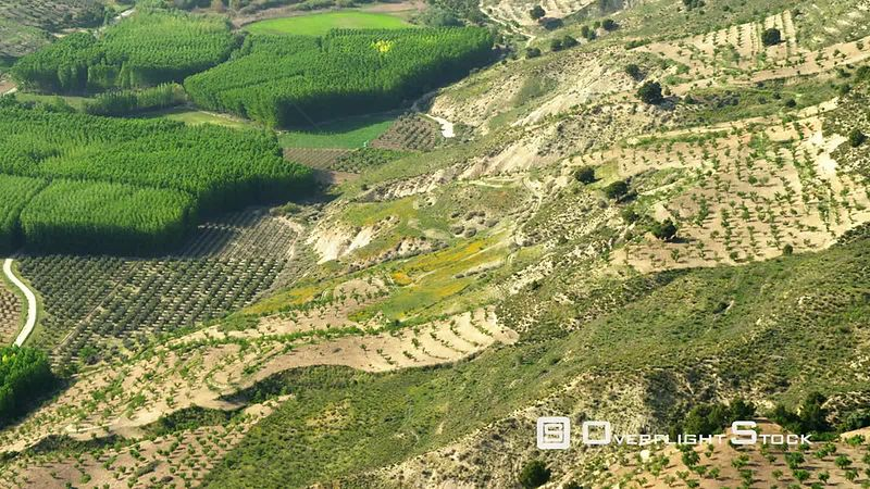 T/d Aerial Shot of Fields and Poplar Plantations Camera Follows Slope in Terrain Down Into a Valley, Spain