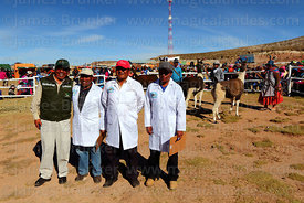 Judges and event organiser before start of judging a competition, Curahuara de Carangas, Bolivia
