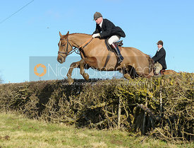 Nick Wright jumping a hedge near Knossington Spinney - The Cottesmore at Furze Hill.