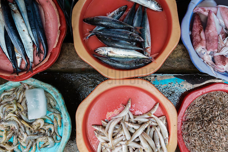 Bowls of Seafood For Sale