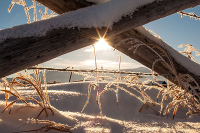 Hoar Frost lining a fence in Grand Teton National Park.  Balmy morning temperature of minus 15 degrees!