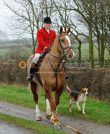 Belvoir Huntsman John Holliday - The Belvoir Hunt at Sheepwash 31/12