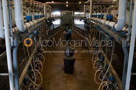 A polygon milking parlour