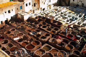 Leather dyeing at the tannery in the medina, Fes, Morocco; Landscape