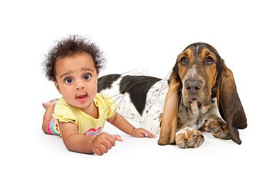 Cute Multicultural Baby With Dog