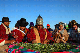 Aymara people share communal coca leaves during Aymara New Year celebrations, Tiwanaku, Bolivia