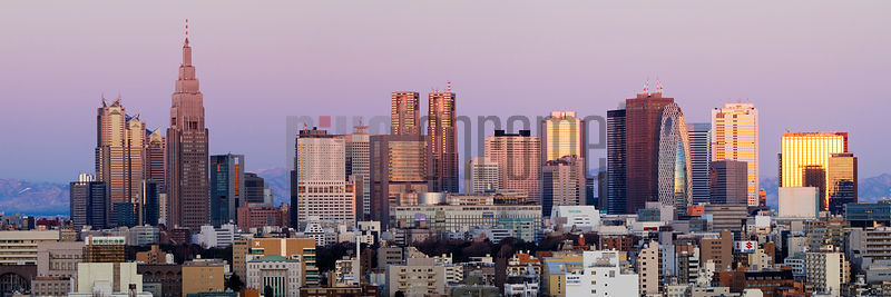 Shinjuku Skyline at sunrise