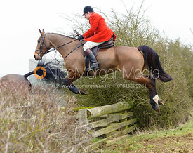 Richard Hunnisett MFH jumps a hedge away from the meet at Ladywood Lodge