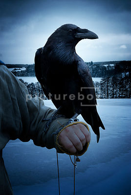 A historical fiction image of a mystery man holding a Raven.