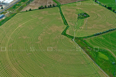 Hay Farm in Circular Pattern Irrigation System Oregon