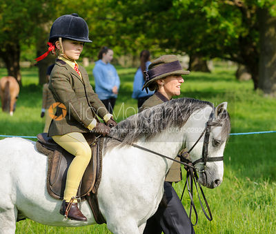 Class 16 - BSPS Heritage M&M Pretty Polly (ROHS) Leading Rein Pony photos