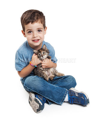 Happy Little Boy With Kitten