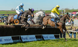 TEMPERED STEEL, SMITHS HILL - Race 1 Novice Riders - The Belvoir Point-to-point 2017
