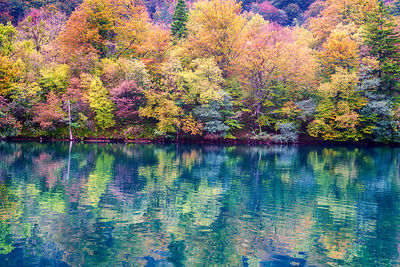 Plitvice Reflections