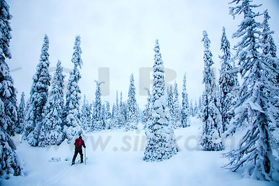 Lapland photos