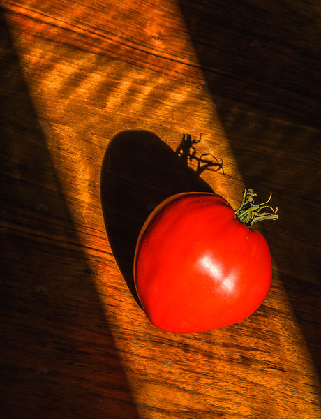Ombre & Tomate