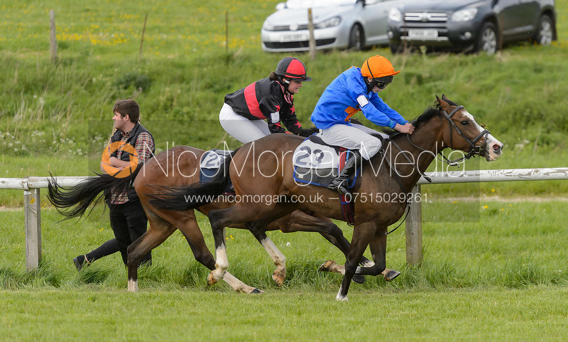 Pony Race 3 - The Melton Hunt Club Point-to-Point 2017