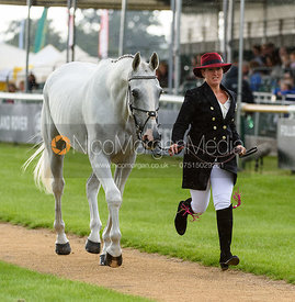 Nana Dalton and ELITE SYNCOPATION at the trot up, Land Rover Burghley Horse Trials 2018