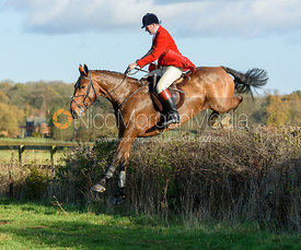 Chris Edwards jumping a hedge near the meet