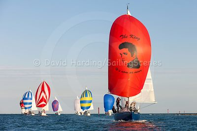 Regattas and racing events photos
