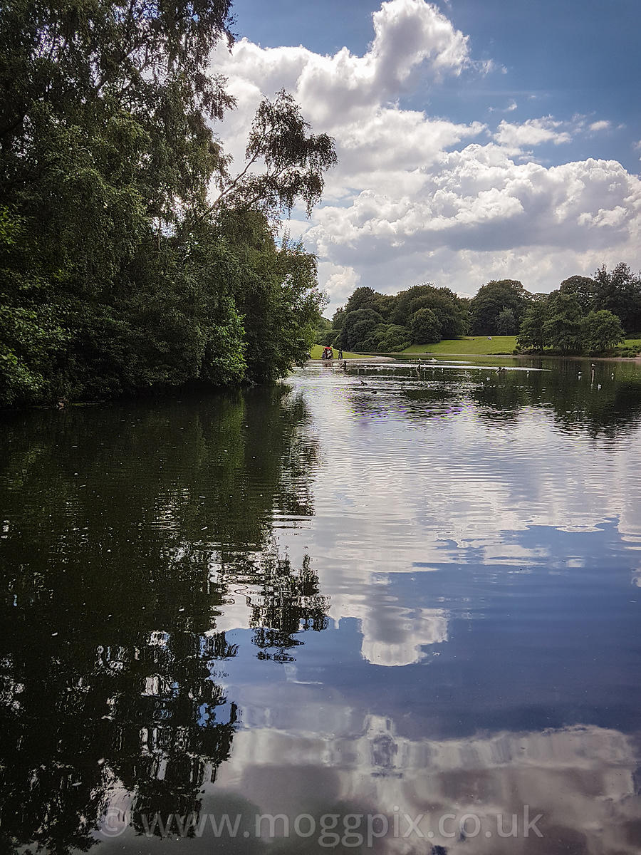 Sefton Park Lake: Portrait