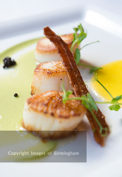 Scallops in a fine dining restaurant