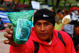 Coca grower with bag of coca leaves ( Erythroxylum coca ) at trade fair promoting products made from coca leaves , La Paz , Bolivia