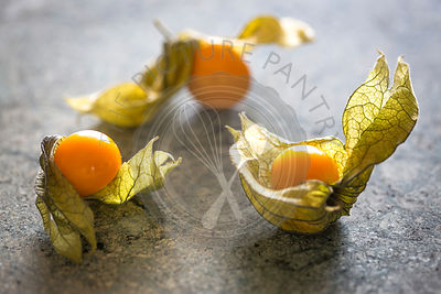 grouping of 3 physalis berries with delicate papery husk on green marble