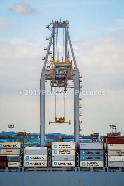 Giant Crane at the London Gateway Port