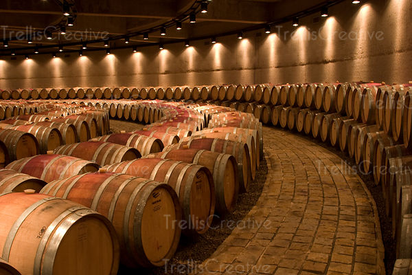 Underground wine cave with hundreds of oak wine barrels ageing wine