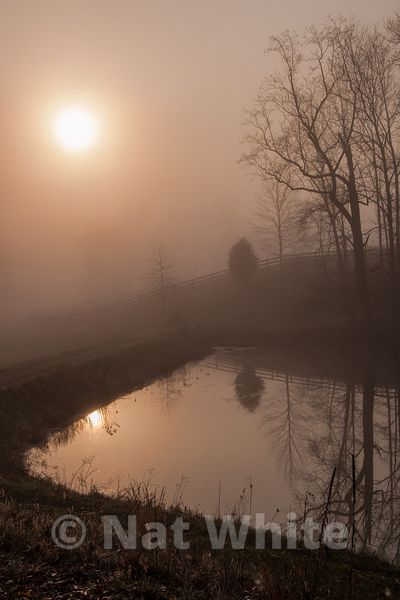 Canyon_Farm_Pond_in_sunrise-NAW_1047-March_18_2012