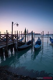 Row of gondolas moored at sunrise, Venice, Italy