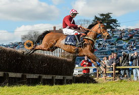 AUNTY JOAN (James Martin) - Subaru Restricted - Woodland Pytchley at Dingley 15/4