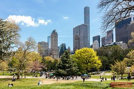 Central Park in springtime, New York city, USA