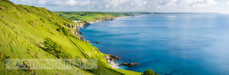 Panoramic view of Start Bay, South Hams, South Devon (BP1712)