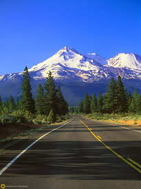 Shasta Morning #5