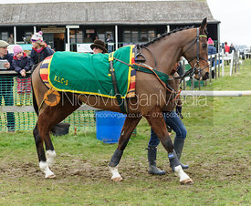 Parade ring - Restricted - Cottesmore at Garthorpe