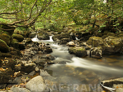 Stream at the lake district