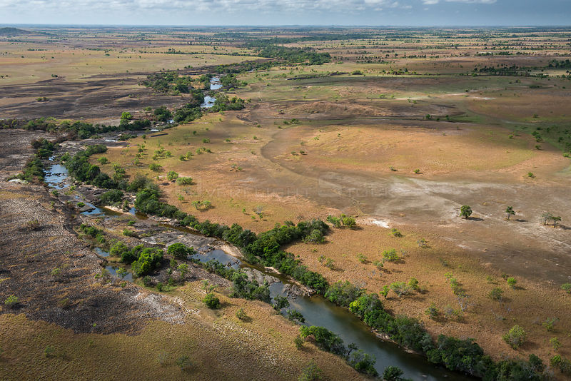 Aerial view of Rupununi river, Rupununi savanna, Guyana South America