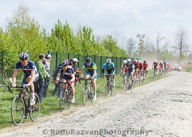 The Peloton on a Dusty Cobblestoned Road