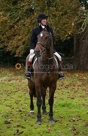 Dick Wise - The Cottesmore Hunt meet in Somerby 6/11